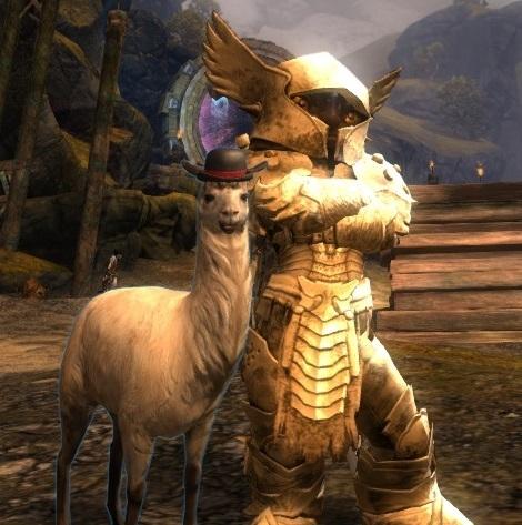 Guild Wars 2 Forum Pvp
